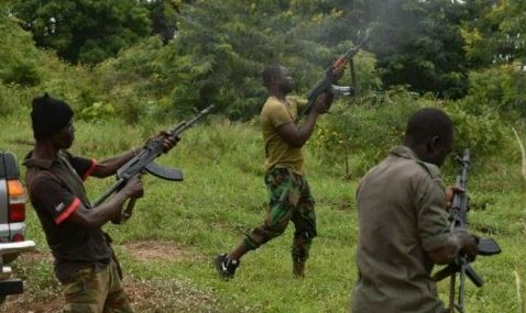 Bandits Kill Traditional Ruler, Ten Others, Kidnap 24 In Niger State 1